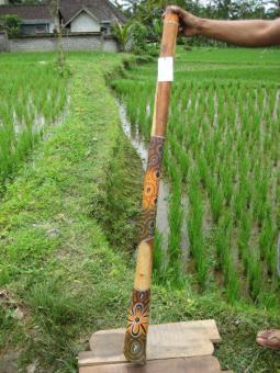 Didgeridoo Eukalyptus 2011-76 E