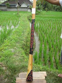 Didgeridoo Eukalyptus 2011-78 C#
