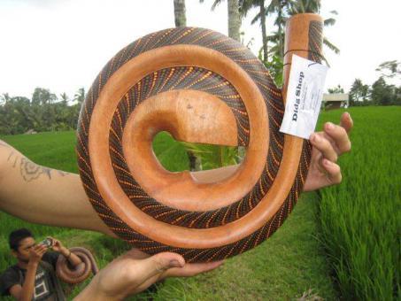 Spiralidoo Snail Didgeridoo Holz bemalt mit Tasche