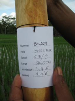 Didgeridoo Eukalyptus 2011-50