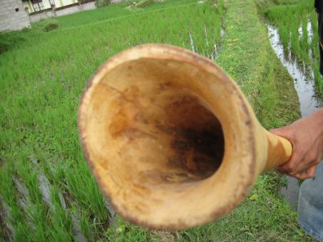 Didgeridoo Eukalyptus 2011-51